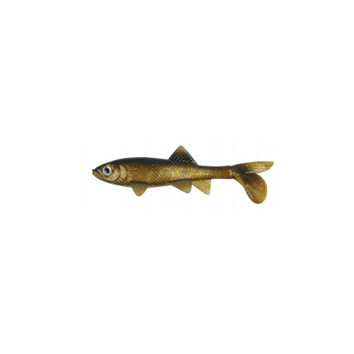 Berkley Berkley Havoc Sick Fish, 5.5