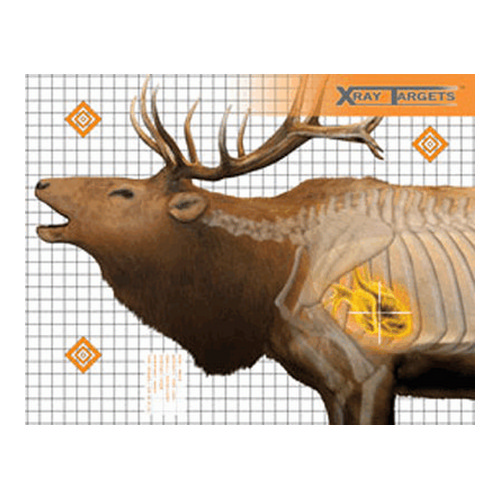 Champion Traps and Targets Champion Traps and Targets Elk Target (6 Pack) 45904