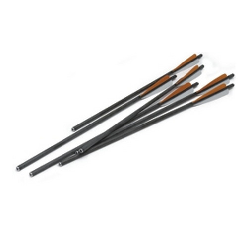 Excalibur Carbon Arrows 20
