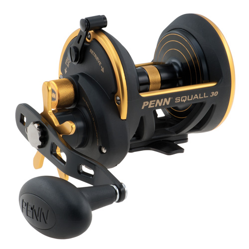 Penn Squall Star Drag Reel 30